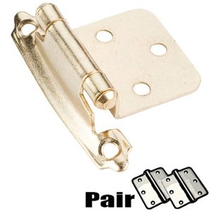 Pair Cabinet Hardware Flush Hinges Polished Brass