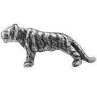 Big Sky Hardware - Animals - Tiger Knob in Pewter