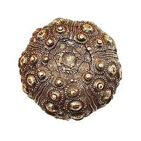 Modern Objects - Scallops & Seahorses - Urchin Knob in Antique Brass